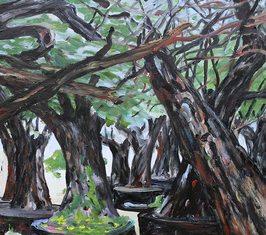 """Oliventræer i planteskole/ """"Kirkegård for oliventræer"""", Mallorca. Akryl på lærred. 80x90 cm."""